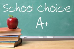School-Choice-700x466-1